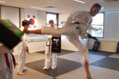 Flying side kick  - Stationary