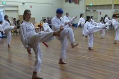 Black Belt Grading Front kick